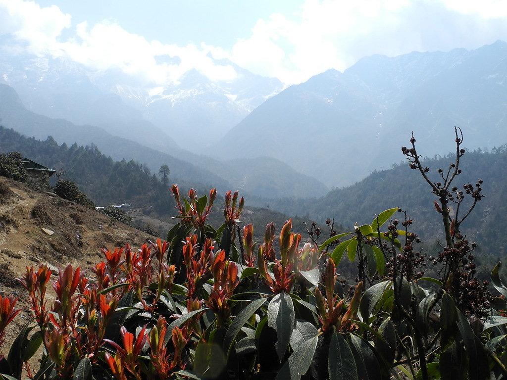 On the way up to Zetra La Pass